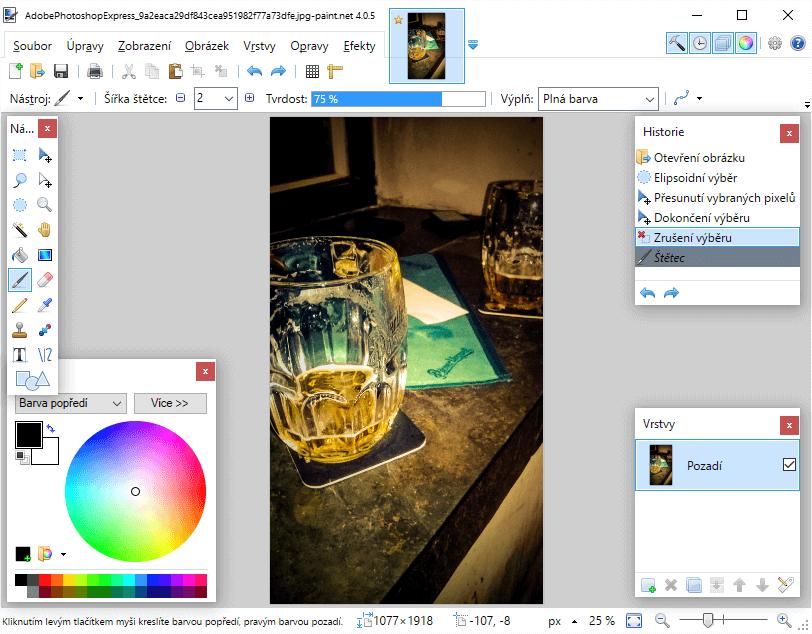 paint net pro